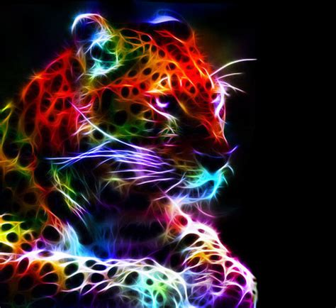 colorful cat wallpaper bright colors images neon big cats wallpaper and