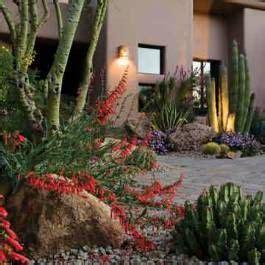 southwestern living desert gardens colorful desert