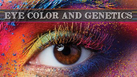 eye color genetics eye color genetics ackerson family eyecare