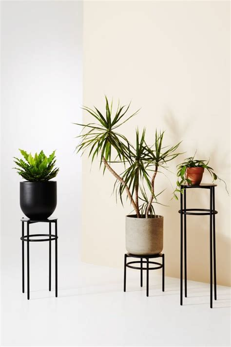 printed vases concrete plant stands ivy muses
