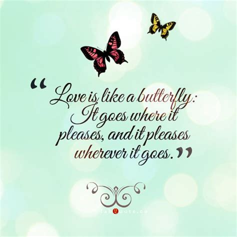butterfly sayings 1000 butterfly quotes on butterfly sayings