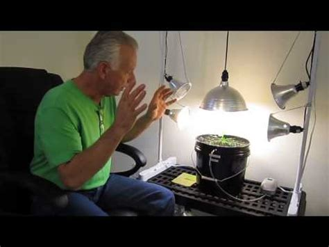 Cfl Grow Light Setup by How To Set Up A Cfl Compact Floresent Lighting Rig For