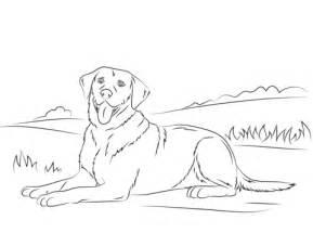 ausmalbild labrador retriever kostenlos