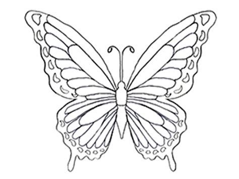 Butterfly Colour 10 disegni di farfalle da colorare mamma e casalinga