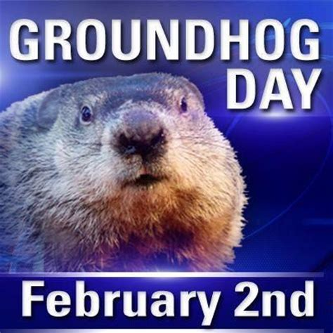 groundhog day zodiac 17 best images about february on valentines
