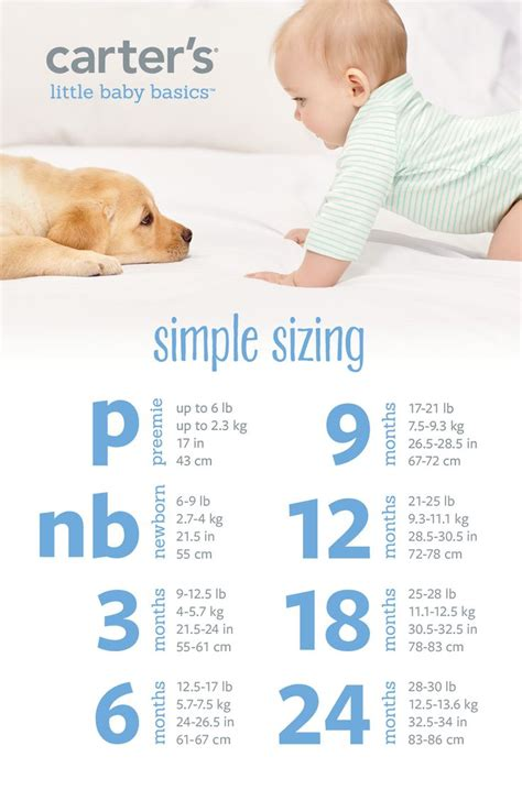 baby basics clothes 17 best images about s baby basics on