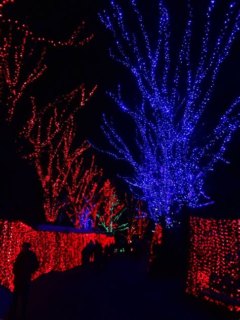 Zoo Lights At The Oregon Zoo Lil Bit Zoo Lights Oregon