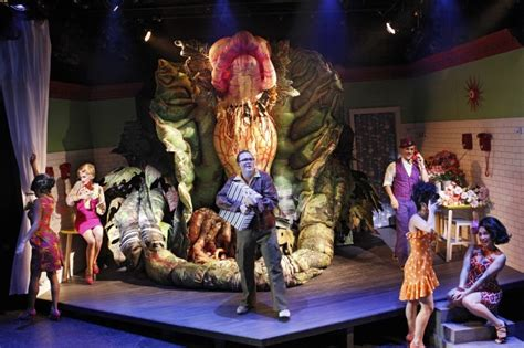 little shop of horrors musical wikipedia musical theatre nominees in 2016 sydney theatre awards