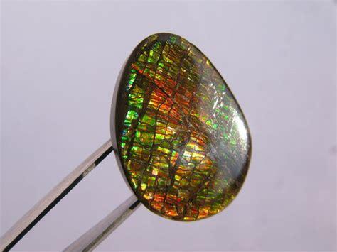 ammolite gemstone 14 ct catawiki