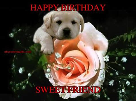 happy birthday sweet friend birthday graphics  facebook tagged facebook tumblr