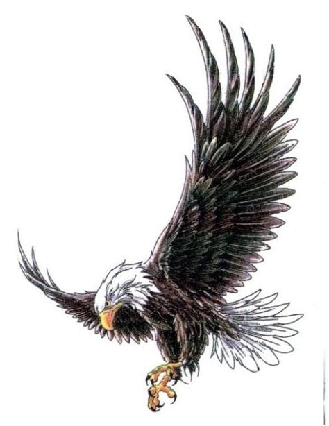 spread wings tattoo designs eagle with wings spread tattoos