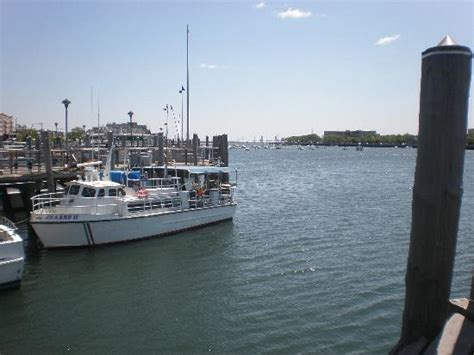 fishing boat trips brooklyn the bay from il fornetto restaurant picture of