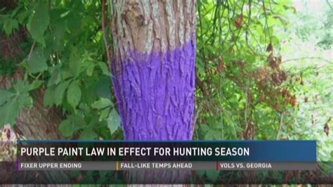 purple paint law wbir com purple paint law in effect for hunting season