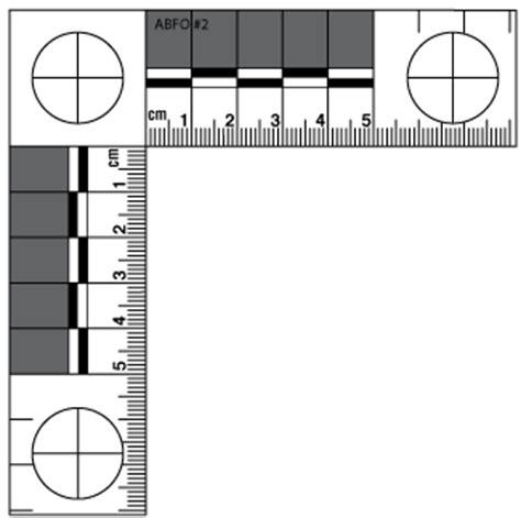 printable evidence ruler 187 abfo 2