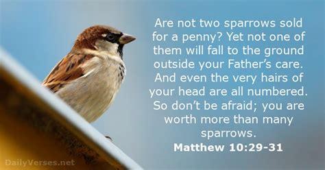 Matthew 10 29 31 bible verse of the day dailyverses net