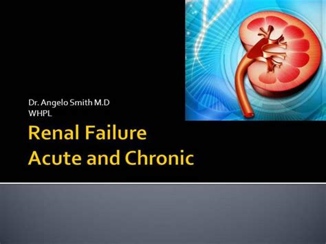 28 and kidney disease ppt and kidney disease ppt powerpoint templates kidney images powerpoint template and layout toneelgroepblik Image collections