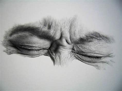 30 amazing realistic pencil drawings visual swirl 30 realistic pencil drawings and drawing tips for