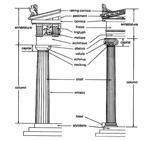 Pedestal Meaning Anatomy Of Doric And Ionic Columns Doric Has No Base An