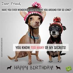 funny birthday wishes for your family amp friends