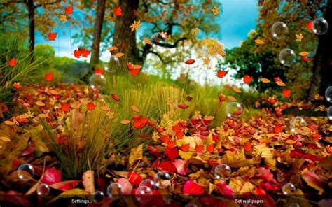 download colorful autumn 3d live wallpaper free for autumn live wallpaper android apps on google play