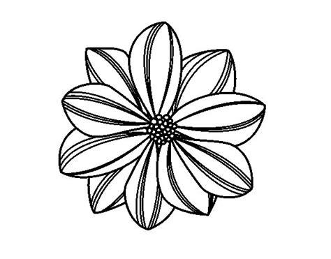 margherita fiore disegno disegno di fiore di margherita da colorare acolore