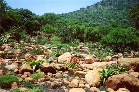 National Botanical Gardens Witwatersrand