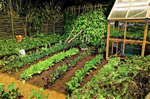 flower garden designs for perennials home landscaping