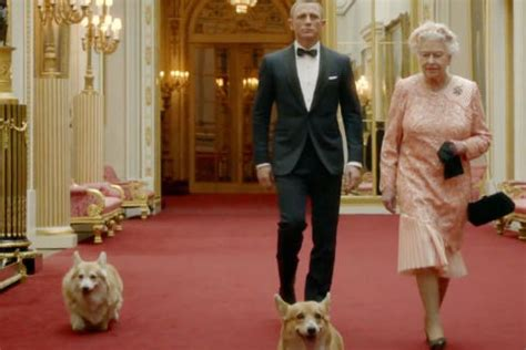 how many corgis does the queen have 80 years of the queen s royal corgis queen elizabeth s dogs