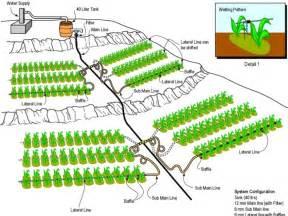 Home Garden Design Software Free lawn sprinkler design garden desig lawn irrigation design