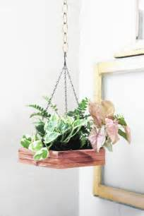 indoor hanging plants hanging houseplants pictures of hanging baskets lovely in one decor