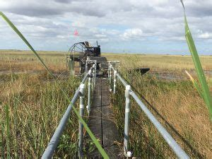best everglades airboat tours reviews best airboat tours everglades