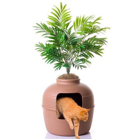 litter box planter litter box cat kitten designer litter tray looks like a planted pot