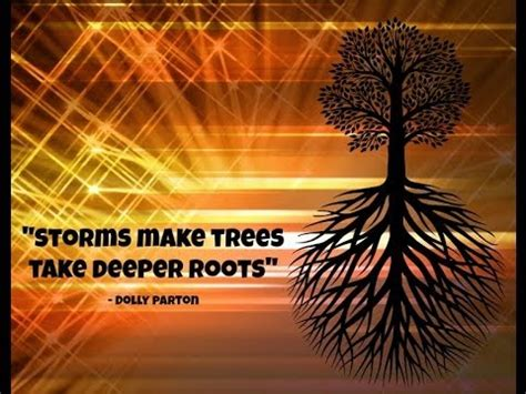 pictures of inspiration inspirational tree quotes for you youtube