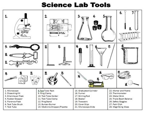 Science Tools Worksheet Kindergarten by 25 Best Science Tools Ideas On Science Tools