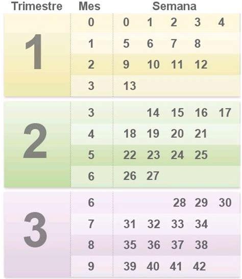 Calendario De Embarazo Semanas Y Meses C 243 Mo Contar Meses Y Semanas De Embarazo Babycenter