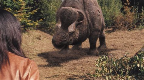 image 3x9 embolotherium 100 jpg anomaly research centre fandom powered by wikia image 3x9 embolotherium 77 jpg anomaly research centre