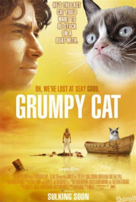 grumpy cat   cat youd    stuck   boat  tard  grumpy cat faxo