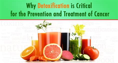 About Cancer Detox detoxification s in cancer prevention and treatment