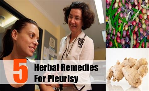 5 pleurisy herbal remedies treatments and cure