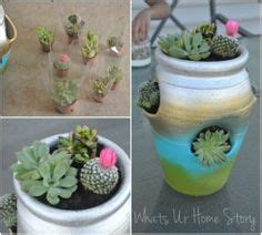 1000 images about strawberry pots on