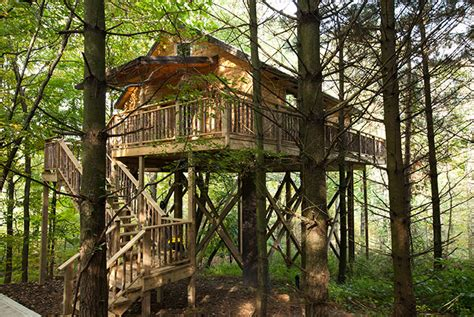 cherry tree house lodging in berlin ohio tree house amish country cabins