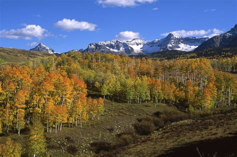 Summit County Property Records Summit County Land Vacant Lots Acreages Ranch Property Colorado Auction Real Estate
