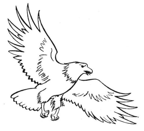 Free Eagle Coloring Pages Eagle Coloring Page