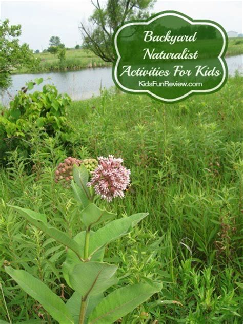 Backyard Naturalist by Backyard Naturalist Activities For The Kid S Review