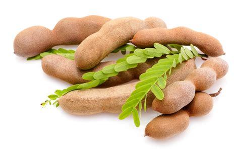Permen Asam Jawa 1 Kg mai fruity delicacies health benefits of tamarind
