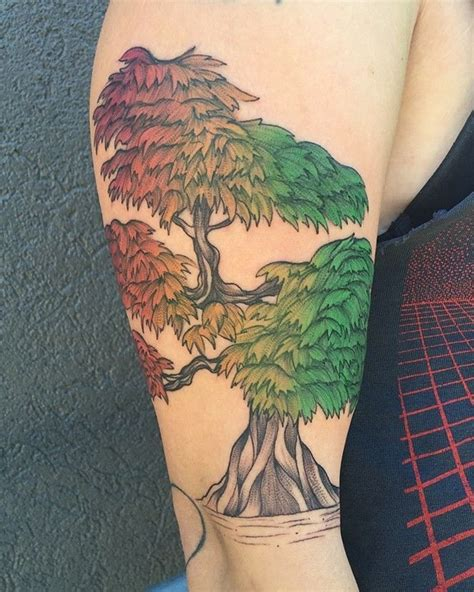 japanese maple tattoo 77 best images about tats and stuff on