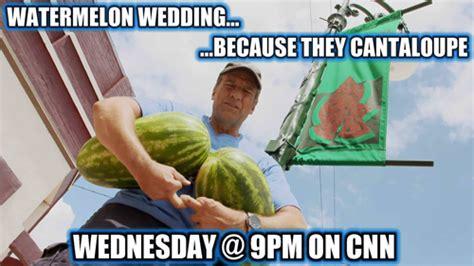 Watermelon Meme - this week s sgdi meme contest winners mike rowe
