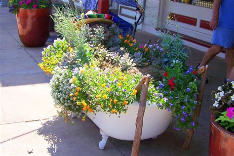 Ideas For Container Gardens Ideas For Container Gardens Corner