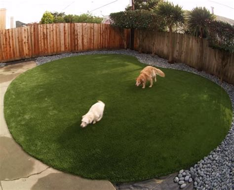 do dogs need grass backyard artificial turf for a dog run area installed in a kidney