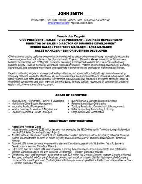 Top Executive Resume Templates & Samples